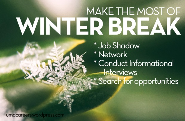 Make the most of winter break: job shadow, network, conduct informational interviews, search for opportunities; snowflake on green leaf