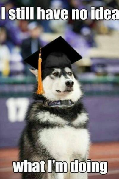 Graduating Husky