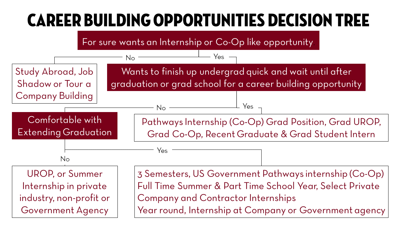 career-building-opportunities-decision-tree