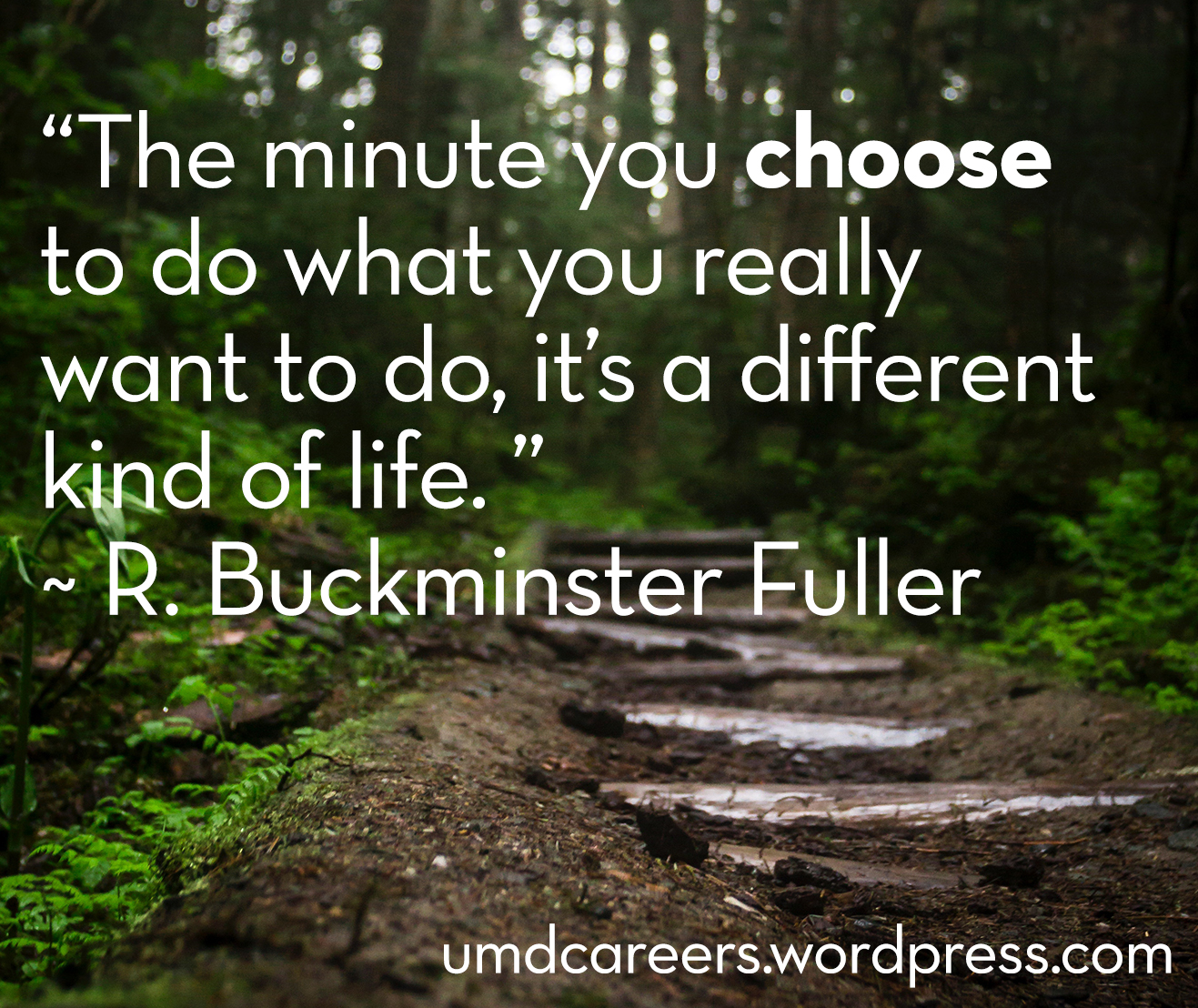 The minute you choose to do what you really want to do, it's a different kind of life. - R. Buckminster Fuller