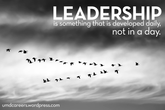 Flying V of geese - Leadership is something that is developed daily, not in a day.