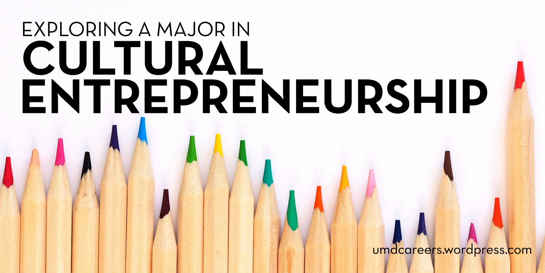 Exploring a major in cultural entrepreneurship