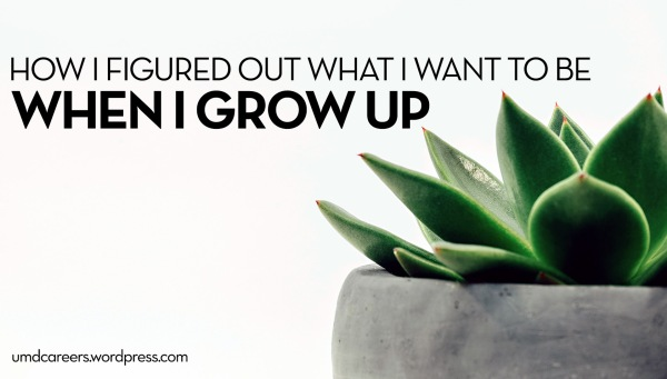 succulent with grey pot; Text: How I figured out what I want to be when I grow up