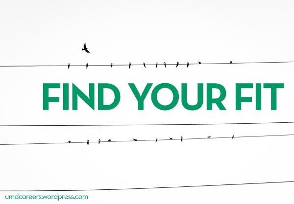 Image: Birds sitting on powerlines, one bird flying around Text: Find your fit