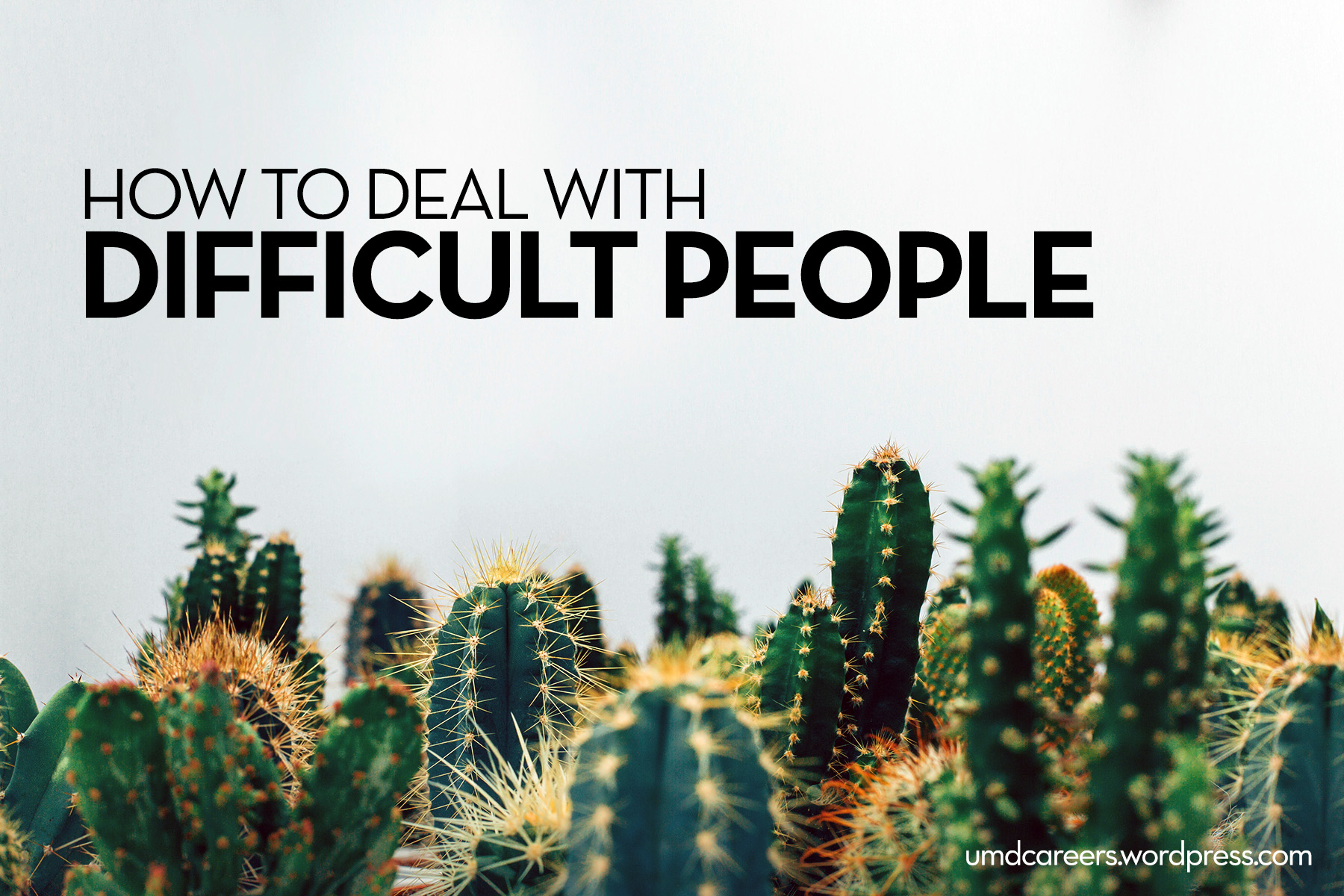 Image: green cacti on a white background. Text: how to deal with difficult people